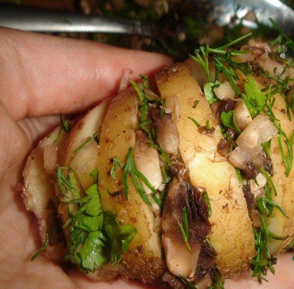 17 Запеченный картофель, фаршированный грибами и зеленью