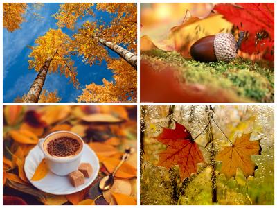 5 причин полюбить осень